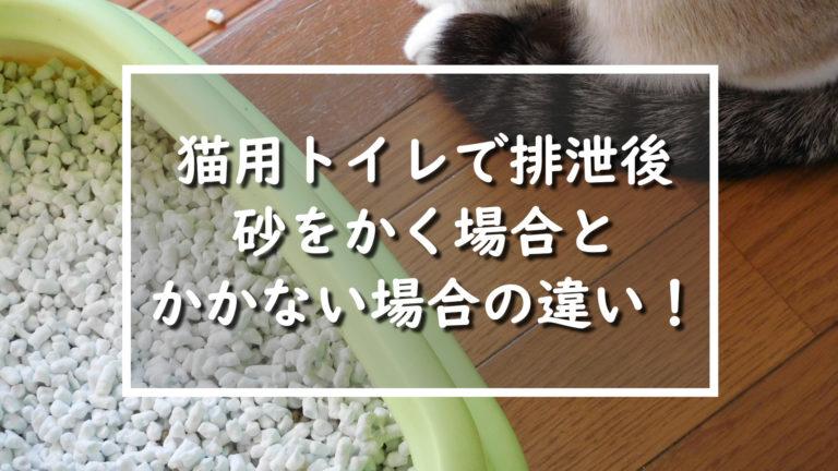 猫用トイレで排泄後の砂をかく場合とかかない場合の違い